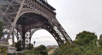 Paris is My Gelée
