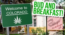 Welcome To Bud + Breakfast, Colorado's Hotel Group Dedicated To Weed Tourism