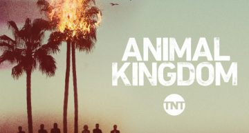 5 Reasons You Must Watch 'Animal Kingdom'
